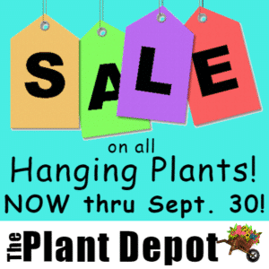 Customize Your Own Retail Banners - Plants Sale Template - Custom Graphix