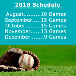 Customize Your Own Baseball Banners - Game Schedule Template - Custom Graphix