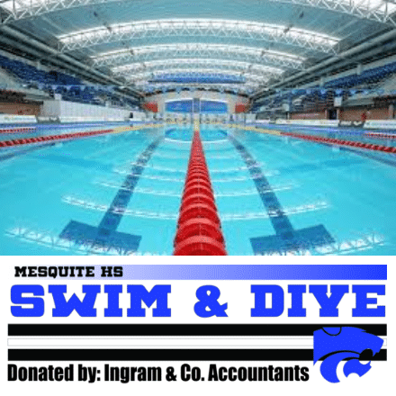 Customize Your Own Sponsor Banners - Swim & Dive Template - Custom Graphix