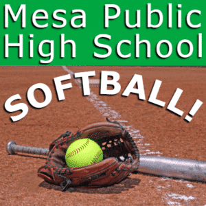Customize Your Own Softball Banners - Public Shool Template - Custom Graphix