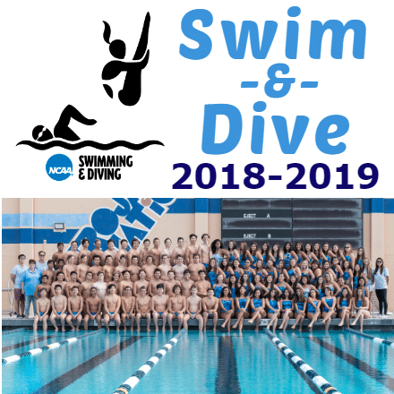 Customize Your Own Swimming Banners - Swim & Dive 2 Template - Custom Graphix