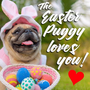 Customize Your Own Easter Banners - Pug & Dog Templates - Custom Graphix