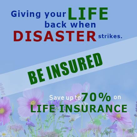 Advertising Banner - Life Insurance Template - Custom Graphix
